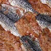 Makrela filety kořeněné_detail_1